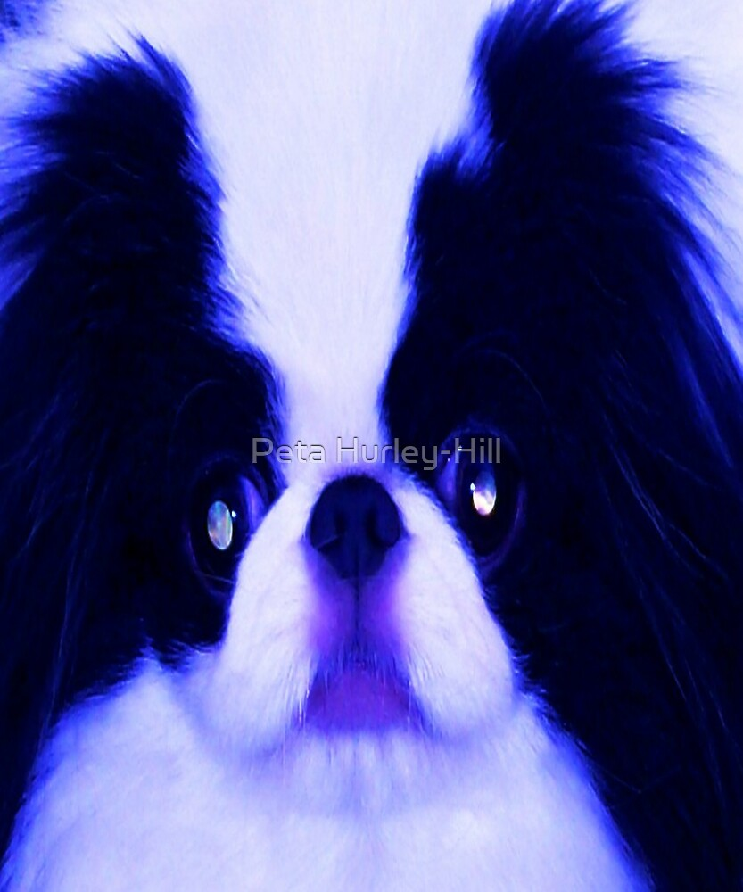 chin by Peta Hurley-Hill