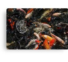 Fish Bath - Batu Caves, Malaysia. Canvas Print