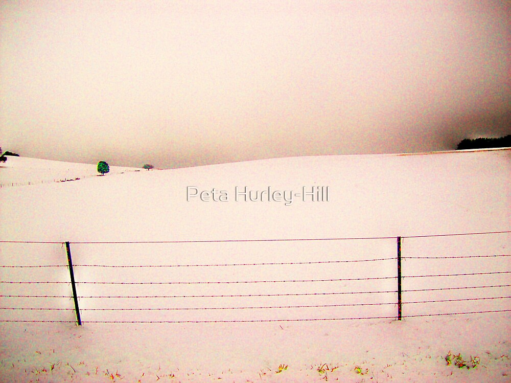more snow by Peta Hurley-Hill
