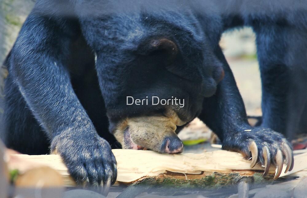 Snack time by Deri Dority