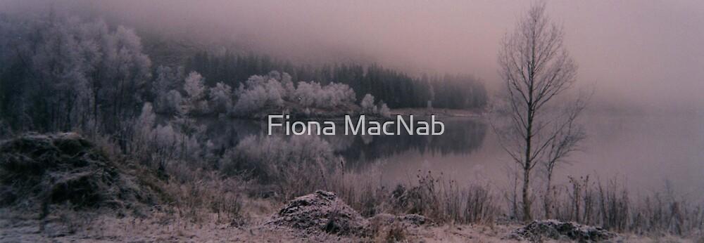 Frosty Trees by Fiona MacNab