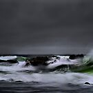 Oregon Coast by Charles & Patricia   Harkins ~ Picture Oregon