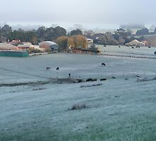 A Cold Country Morning - Nairne. by Leeo