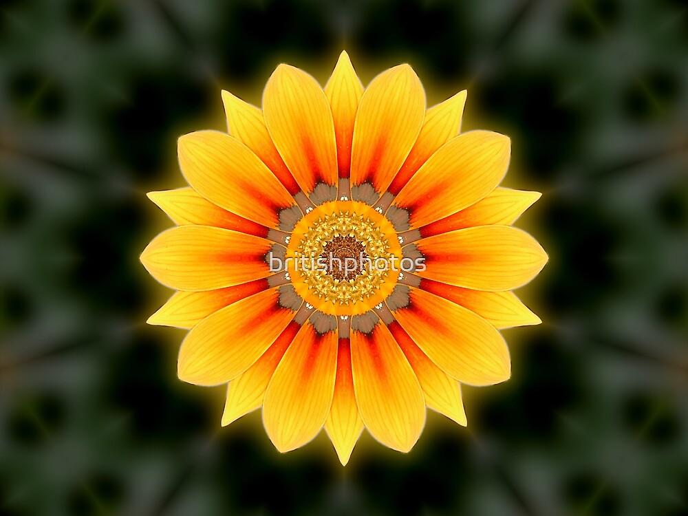 Kaleidoscopic flower by britishphotos