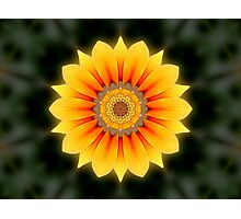 Kaleidoscopic flower Photographic Print