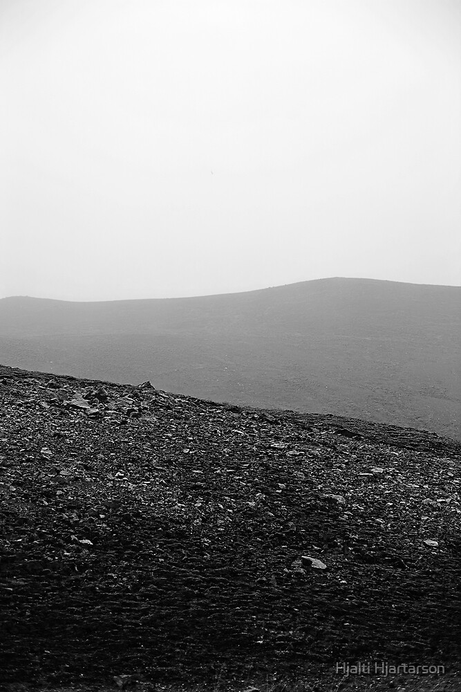 Fog by Hjalti Hjartarson