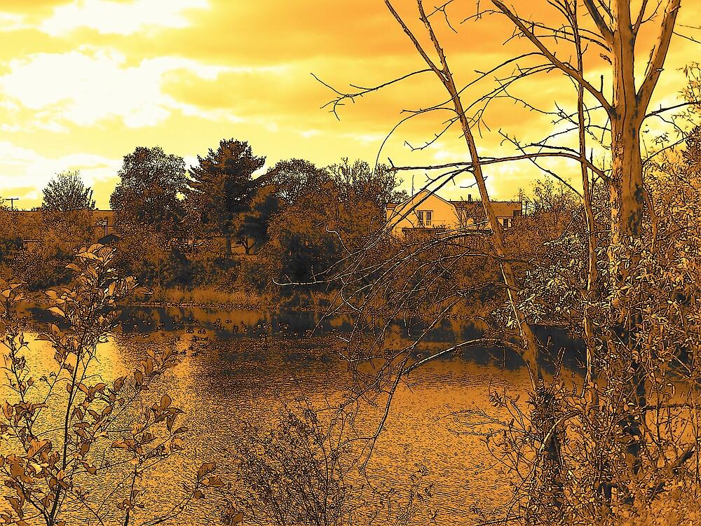 On The Pond by Gene Cyr