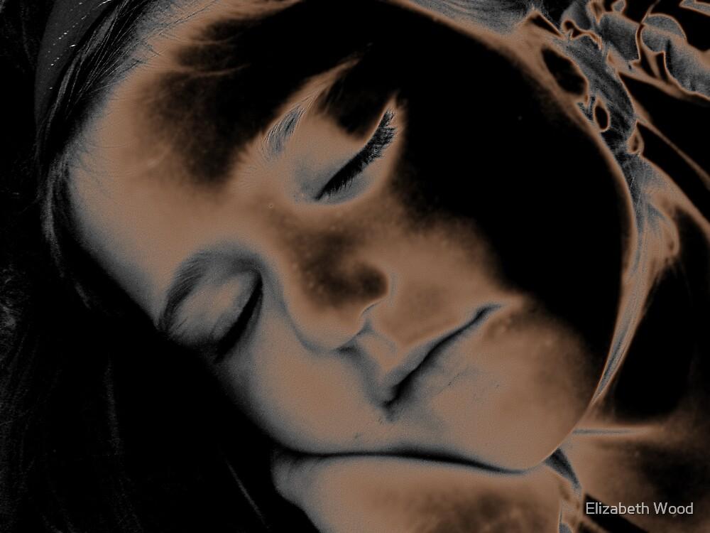 Sleeping Beauty by Elizabeth Wood