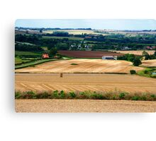 Harvest Stubble Canvas Print