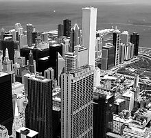 Chicago by Tausha
