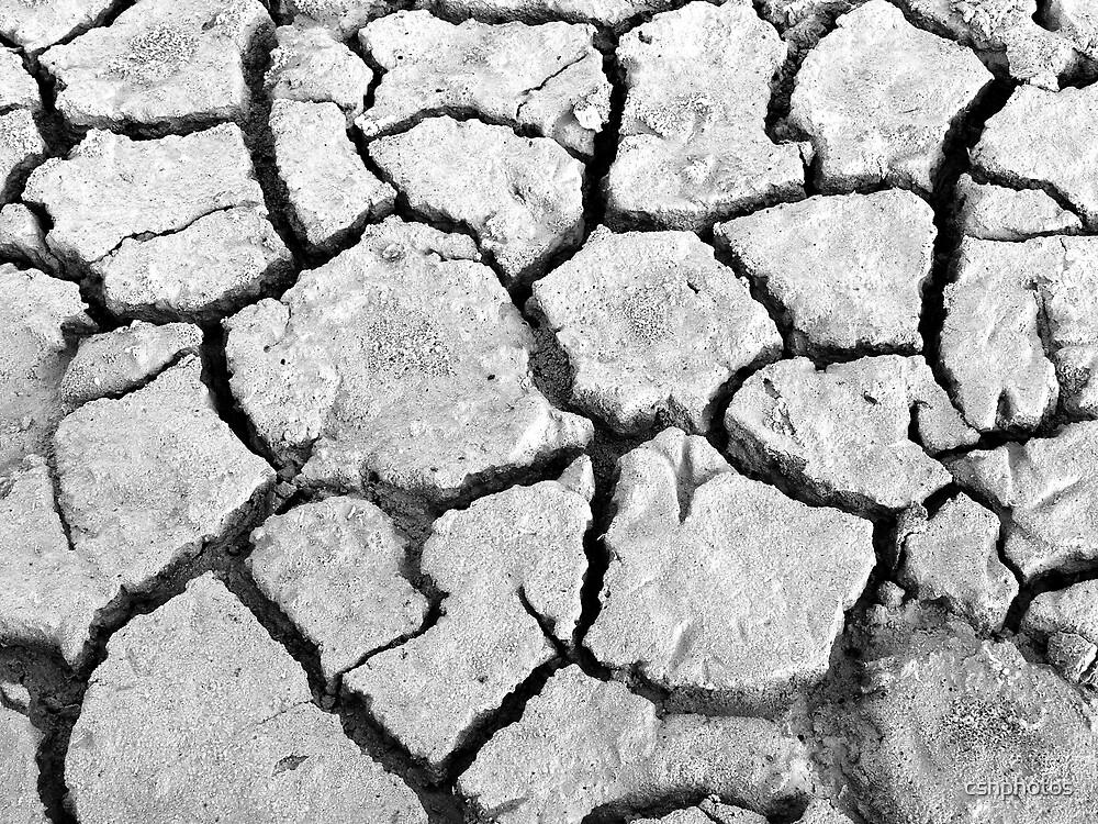 Dry by cshphotos
