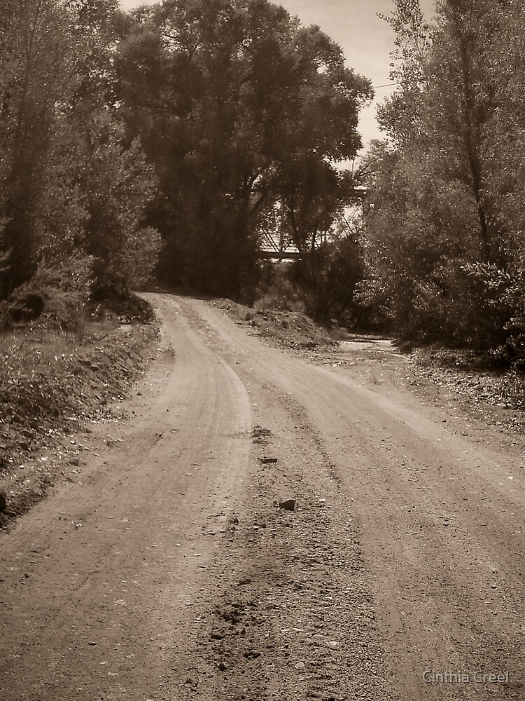 The Dirt Road by Cinthia Creel