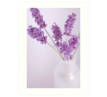 Simple Lavender Art Print