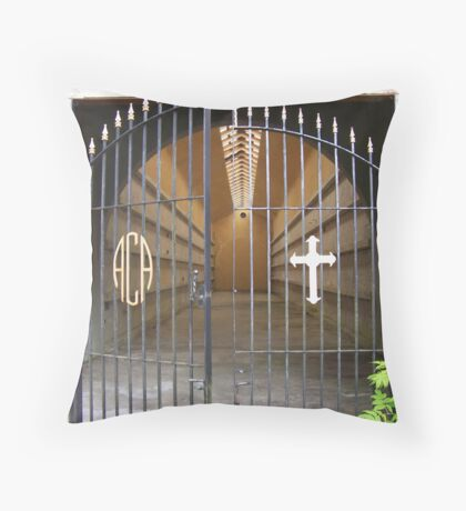 Would you go in? Throw Pillow