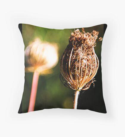 Daucus carota carota Throw Pillow