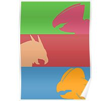 Pokemon Starters -  Gen 3 Poster