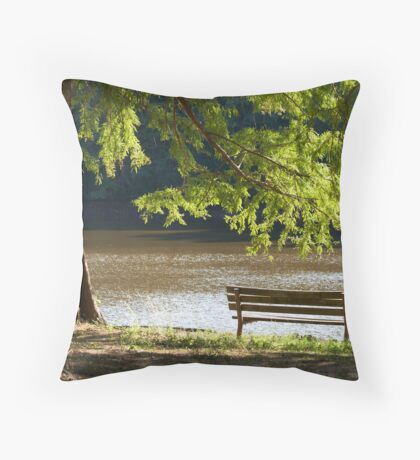 at the water Throw Pillow