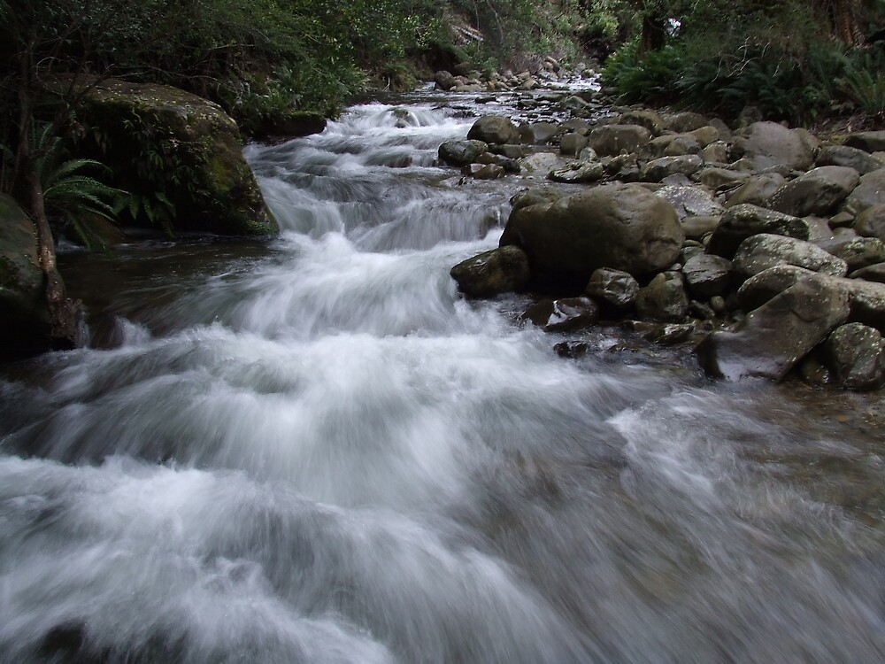 Whispering Waterfall by Samara  Lee