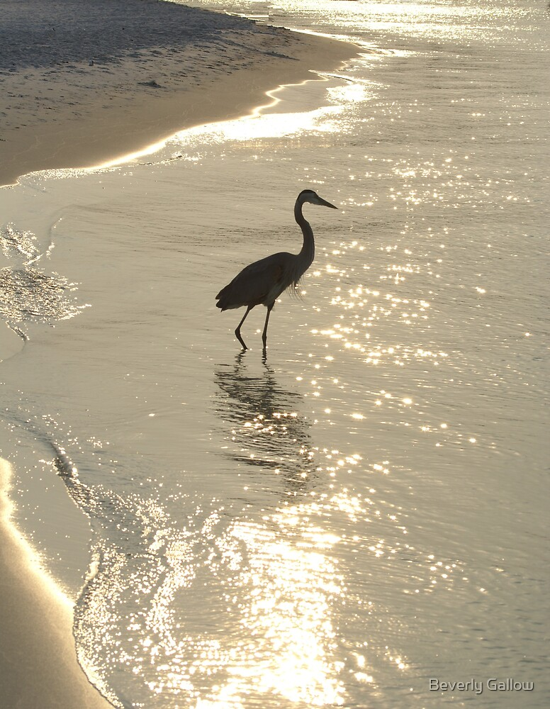 Okaloosa Island Sunset by Beverly Gallow