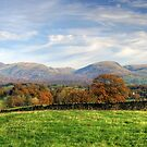 Fells and Fields by Jamie  Green