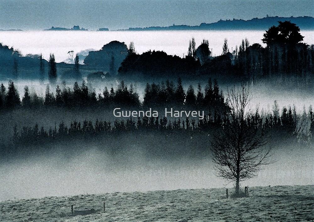 Ohaupo Winter 2 by Gwenda  Harvey