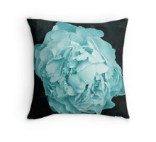 colourized Throw Pillow
