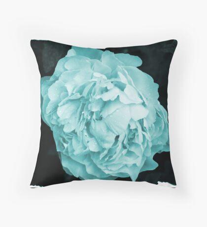colourized Throw Pillow