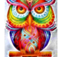 Crystal Owl Sticker