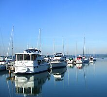Quiet Marina Morning by Janet Rymal