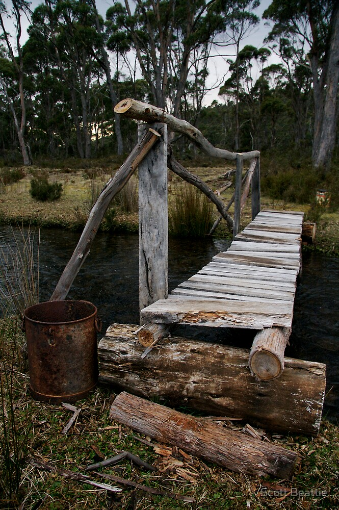 Rustic Bridge by Scott Beattie