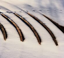 Winter with a twist by Christian Berven