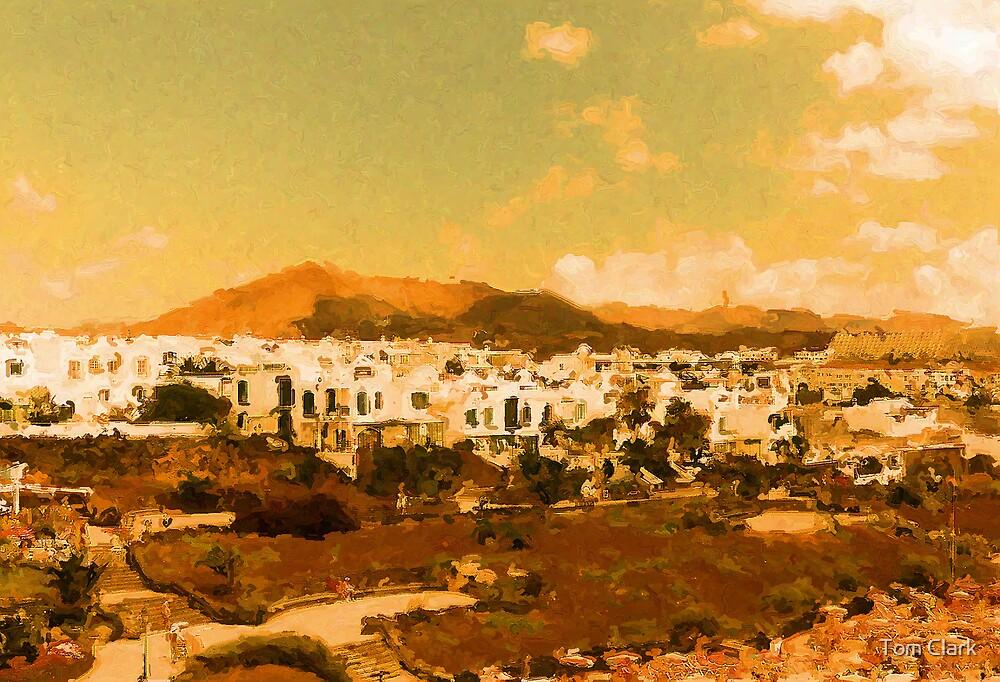 Lanzarote Landscape by Tom Clark