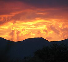 Arizona Sunset by Audra Werkheiser