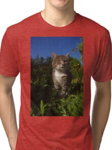 Tabby cat hunting in garden Tri-blend T-Shirt