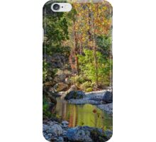 Small Pond at Lost Maples iPhone Case/Skin
