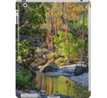 Small Pond at Lost Maples iPad Case/Skin