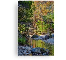 Small Pond at Lost Maples Canvas Print
