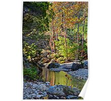 Small Pond at Lost Maples Poster
