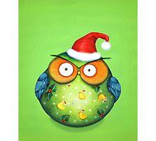 Funny Santa Owl Photographic Print