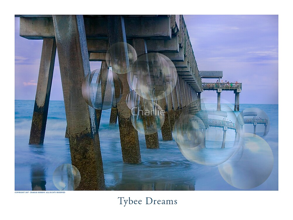 Tybee Bubbles by Charlie