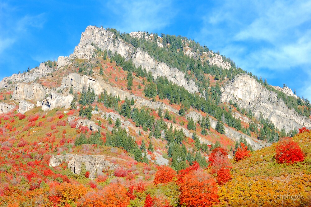 Autumn Mountain by cshphotos