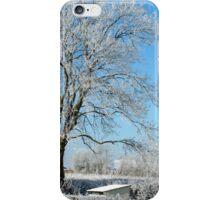 An Irish Winter land-kilkenny iPhone Case/Skin