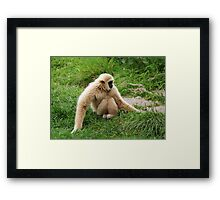 Give me a hug! Framed Print
