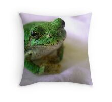 I Wouldn't Hurt A Fly! Throw Pillow