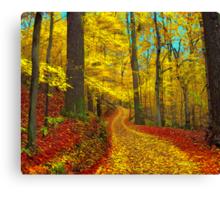Seldom used road Canvas Print