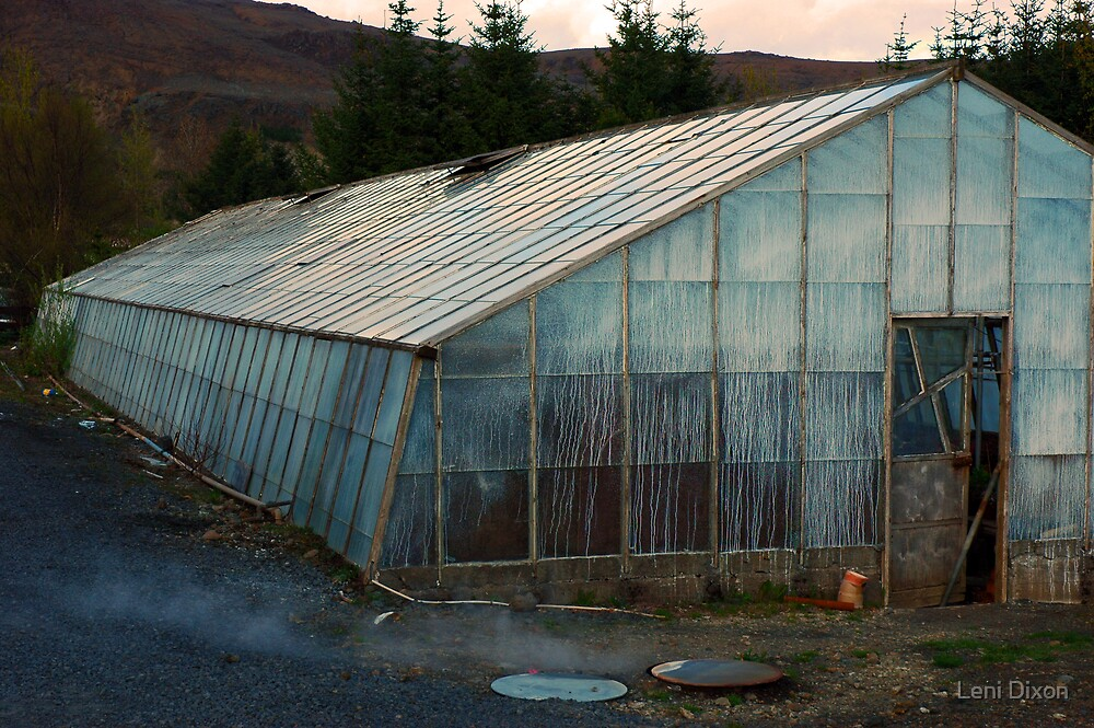 Geothermal Horticulture by Leni Dixon
