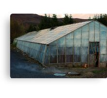 Geothermal Horticulture Canvas Print