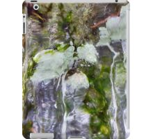 Abstract ice forms iPad Case/Skin