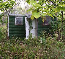 This Little Old House by PDWright