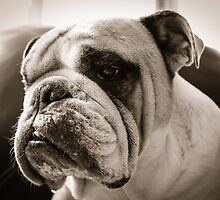 In deep thoughts with slobber bubble by brotbackgeraet